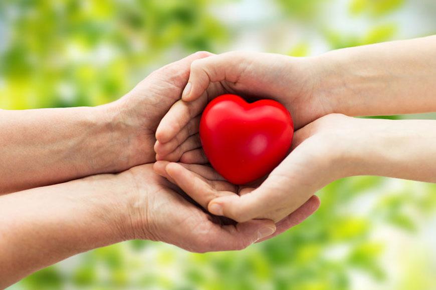 EPA, DHA y la salud del corazón: los primeros estudios