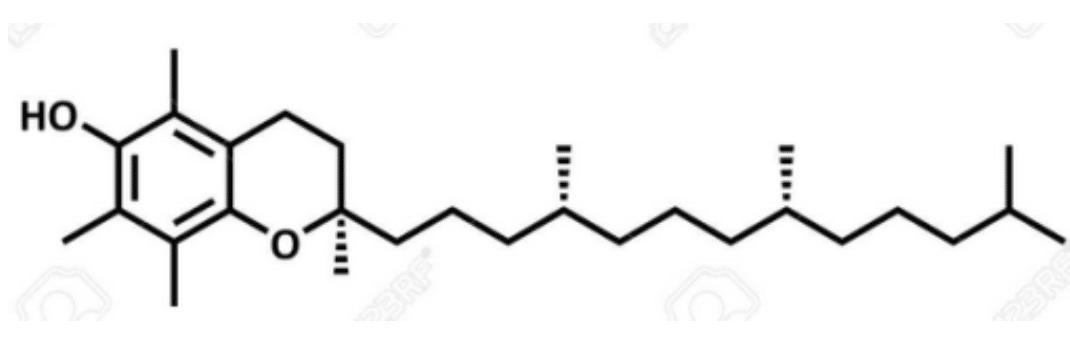 Estructura de la Vitamina E: α-tocoferol.