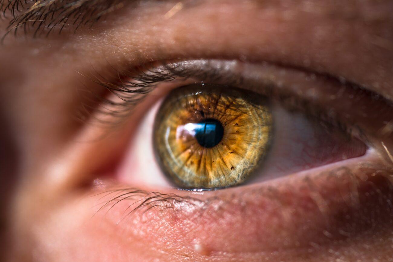 EPA y DHA: Dos Omega-3 que velan por tu Salud Visual